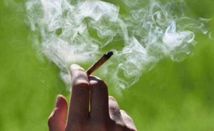 Premium Hemp CBD Cigarettes